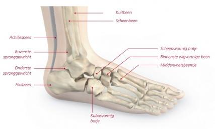 pijn in heup en been en voet