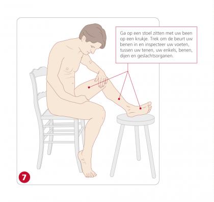 - 07-voet-been-geslachtsorganen